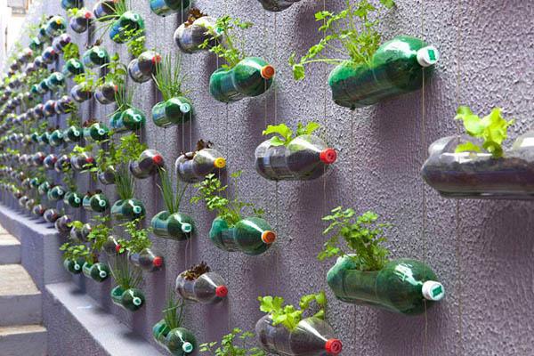 jardin vertical_recup bouteille plastique