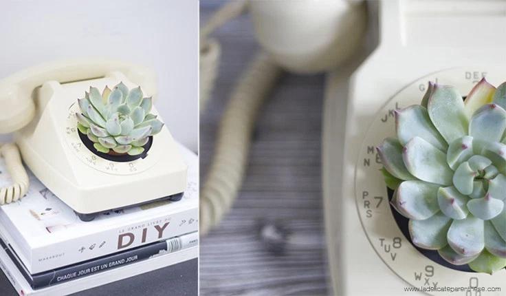 vieux telephone = pot plante